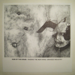 Hum of The Druid – Raising the New Wing/Braided Industry LP