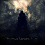 Now Available:  V/A ‎– The Malignant Series / Vol. II: The Black Plague
