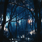 Oneirogen – Kiasma CD
